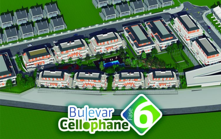 Bulevar Cellophane 6